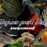 AQUAPET JOY BUSINEES CARD DESIGN